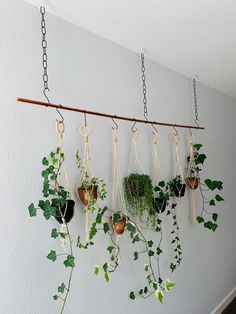 How to hang a plant from ceilings