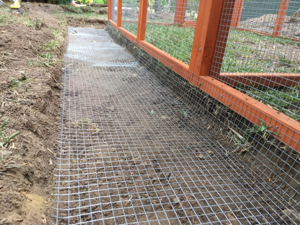 Trench for a Chicken Coop