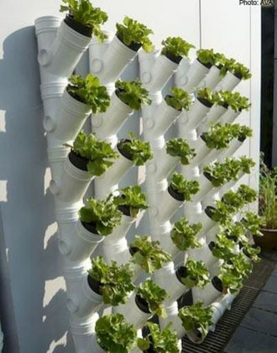 Vertical Gardening Pipe