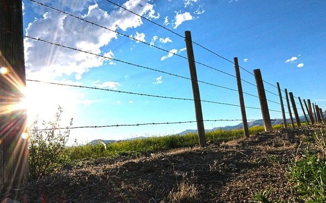 A Quick Guide to Building Farm Fence