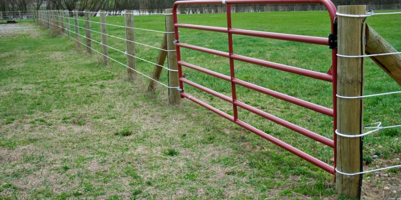 A steel tube gate for an electric fence