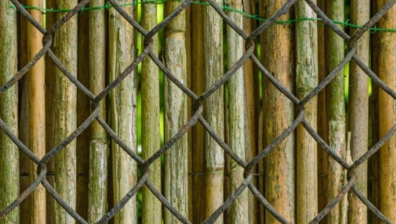 Bamboo Chain Link Fencing