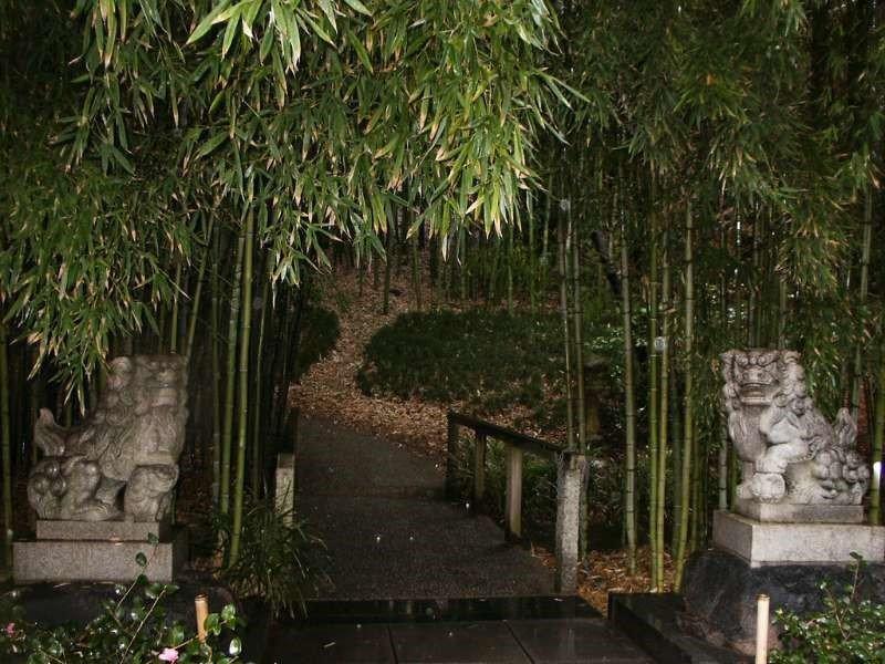Bamboo Japanese Garden