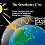 Causes of the Greenhouse Effect