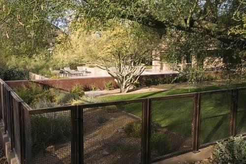 Charming Backyard Fence