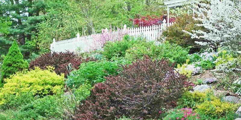 Hillside Landscaping – Tips