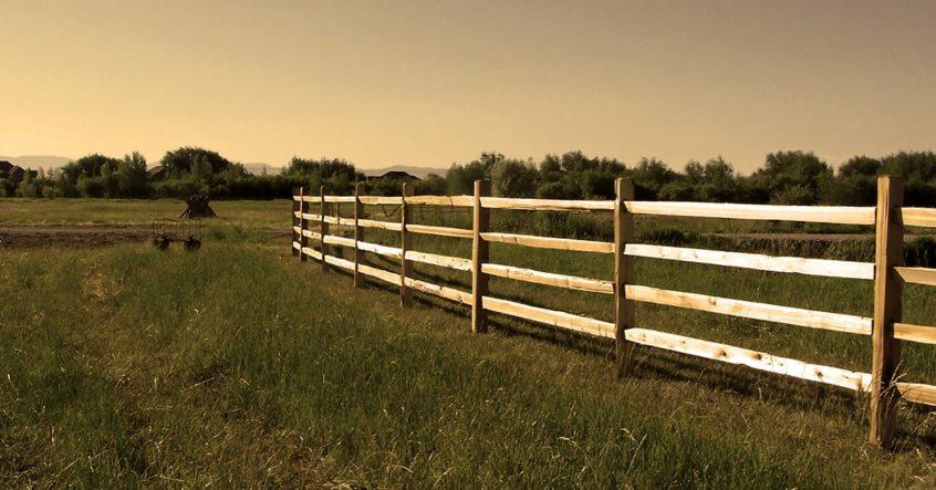 Historic Split Rail Fence