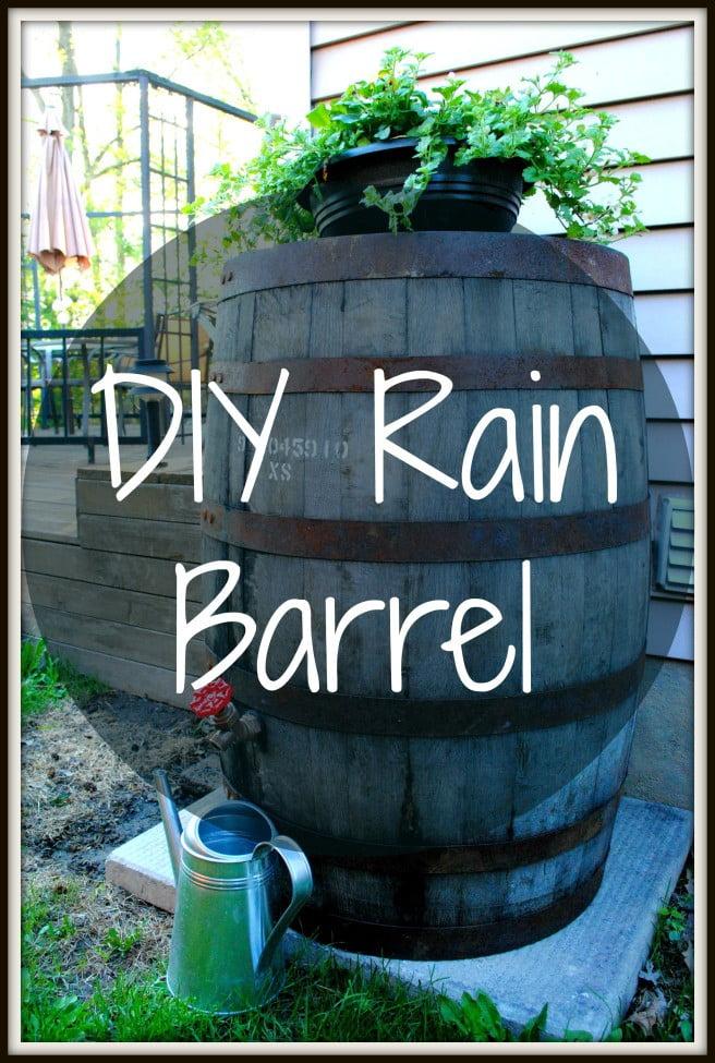 Rain Barrel for Droughts