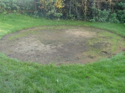 The Best Ways to Revive a Lawn