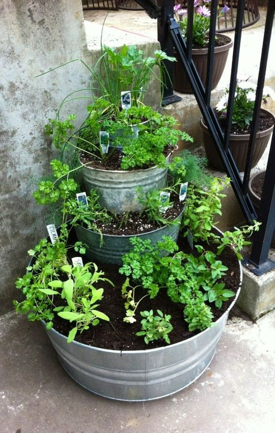 Vertical Pot Garden