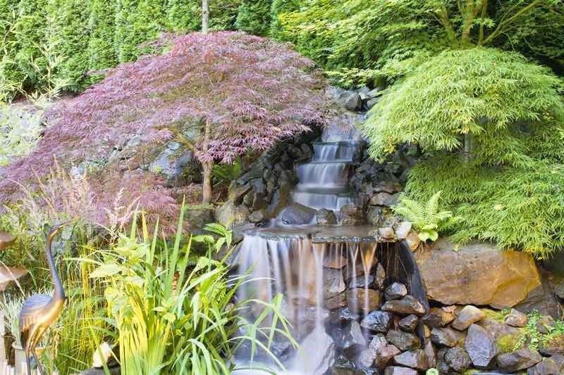 Water Features Japanese Garden