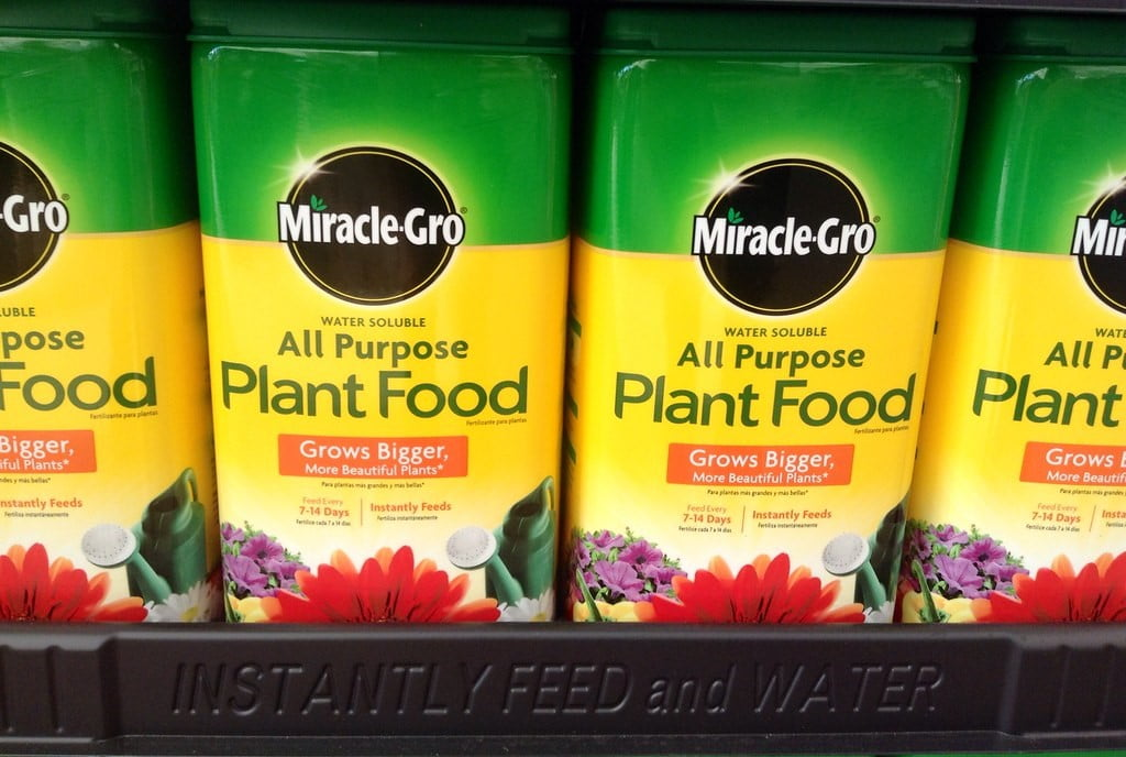 What Type of Miracle-Gro Should I Use