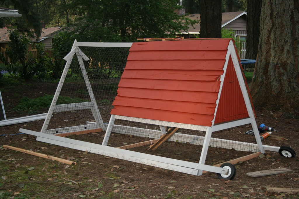 Benefits of Moving Chicken Coops
