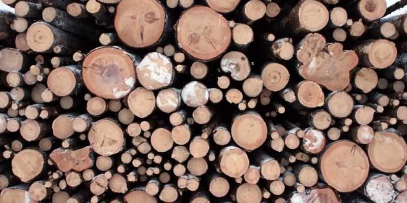 Best Grade Oil for Woodchipper