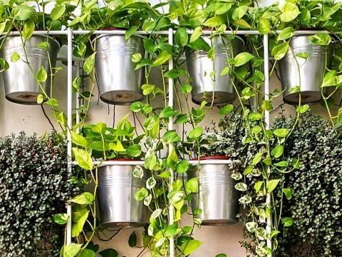 Bucket Holder for a Vertical Garden