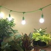How To Use a Miracle Led Grow Light
