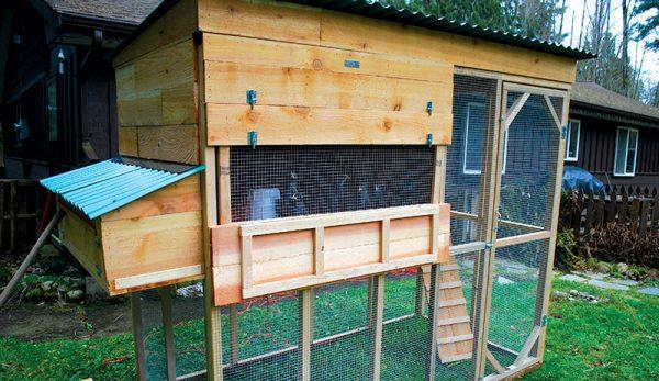 Inexpensive Ways to Build a Chicken Coop