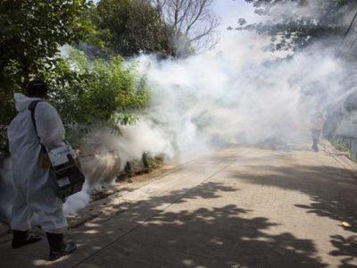 Is Mosquito Fogging Dangerous