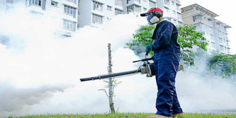 Is Mosquito Fogging Effective