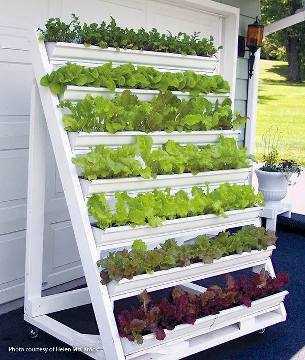 Staircase Stand for Pots and Vegetables