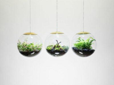 Stunning Terrarium Pendant