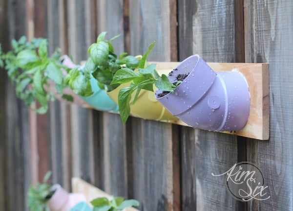 Vertical Garden Made of PVC Pipes