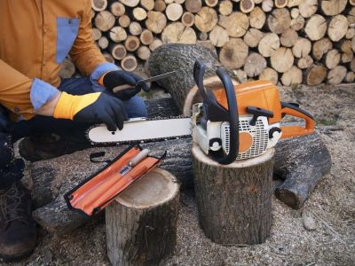 What Size Chainsaw is Good for Tree Cutting
